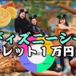 【ディズニーシー】ルーレット1万円企画