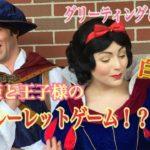 【ルーレット?】白雪姫&プリンス (グリーティング&お見送り TDL)