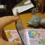 ジュエルペットきら☆デコッ!37話ルーレット!