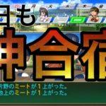 【最終年】[栄冠ナイン]ルーレット高校編#64 10年目夏甲子園 最終年にようやく神合宿です