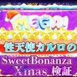 【検証】スイボナクリスマスで6回フリースピン購入!?【カルロのFS購入物語】
