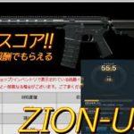 [AVA]ARENAルーレット報酬の新規武器!!素直な縦反動で制御しやすいCZの相方的存在のZION使ってみた![T0MB]