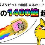 #169【オンラインカジノ|バカラ|ルーレット|バスタビット】カジノ的チキンゲーム